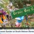 Bringing Work Home: The Forest Garden Video